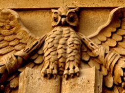 cropped-owl-in-architecture12