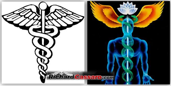 http://www.richardcassaro.com/wp-content/uploads/2011/01/Caduceus-kundalini.jpg