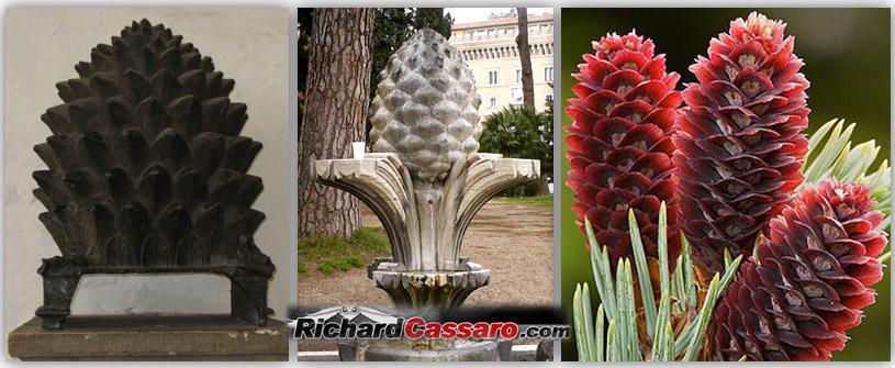 www.richardcassaro.com/wp-content/uploads/2011/01/Pine-Cone-Ancient-images-2.jpg
