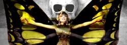 Butterfly Skull & Bones