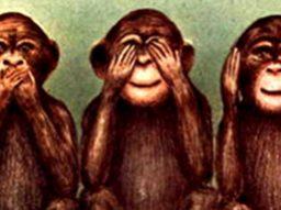 Three-Mystic-Apes2