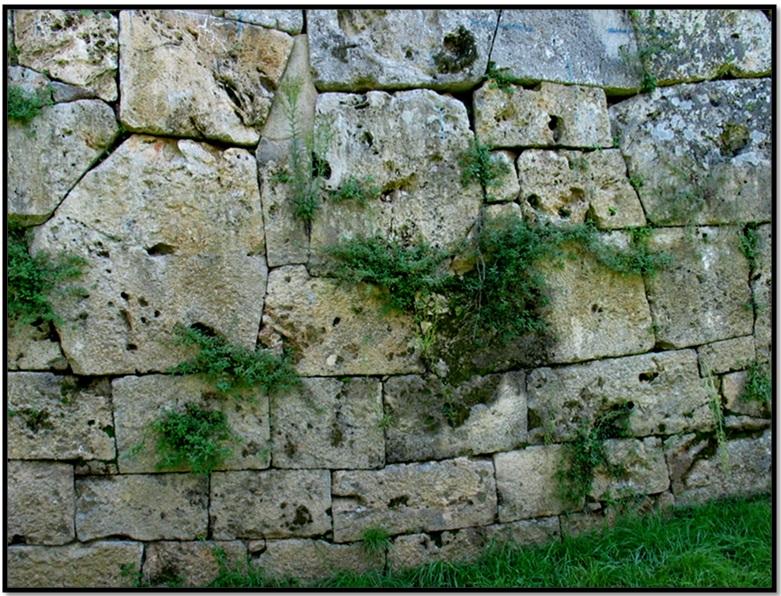 Oculto en Italia: Ruinas ciclópeas prohibidas, (¿de gigantes de la Atlántida?) Cyclopean-Ruins-Cosa-4