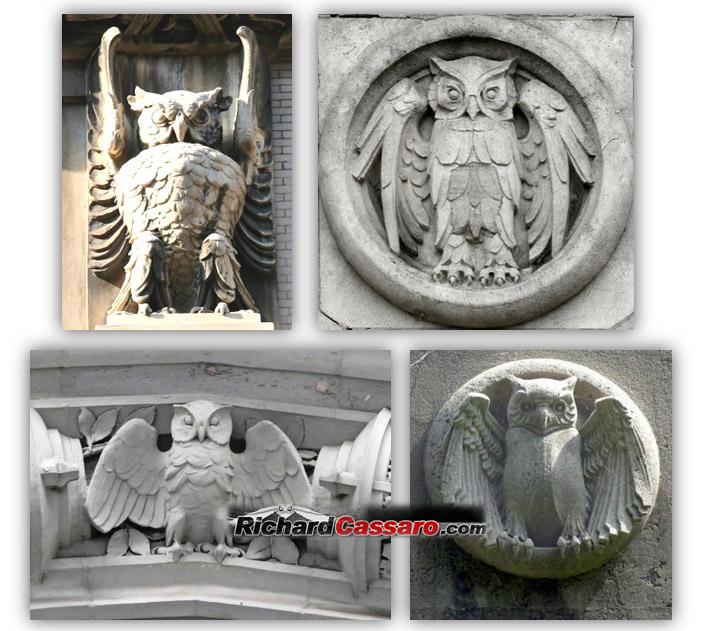 Exposing The Secret Owl Society Soaring Through History Richard